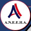 logo_aneeha